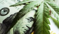 Letter from Colorado: banks and the marijuana business
