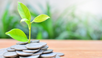 Green Bonds to Raise $500B in 2021