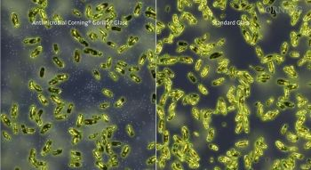 Impact of new technology, left, from Corning for Diebold ATMs as it fights microbes, compared to unprotected surfaces.