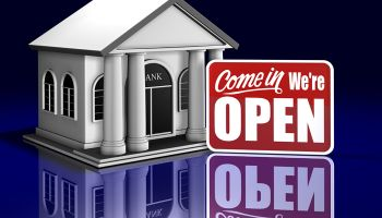 "Should small banks be ""permitted"" to survive?"