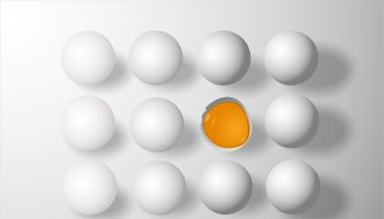Do you have a bad egg in your boardroom? Jeff Gerrish tackles this challenge as he tackles many community bank conundrums from long experience.