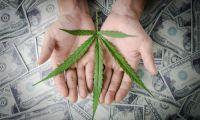 Marijuana banking grows, terminations too