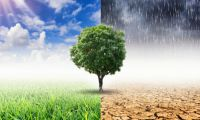 Is climate change risk on your bank's radar?