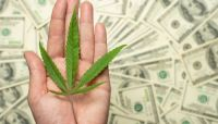 With a New Congress, Banks High on Possibility of Easier Access to Cannabis Accounts