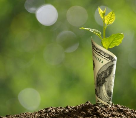 Green Banks May Rise in 2021 in the United States