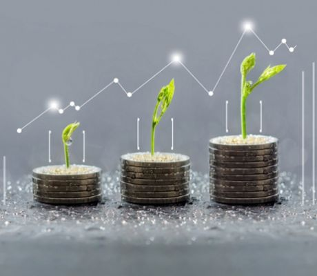 Why Investors Still Back SRI Despite Pandemic